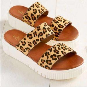 ALTAR'D STATE lana platform sandals leopard 6 (E6)